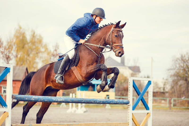Young horseman on show jumping competition. Rider with sorrel horse jump over the hurdle royalty free stock image