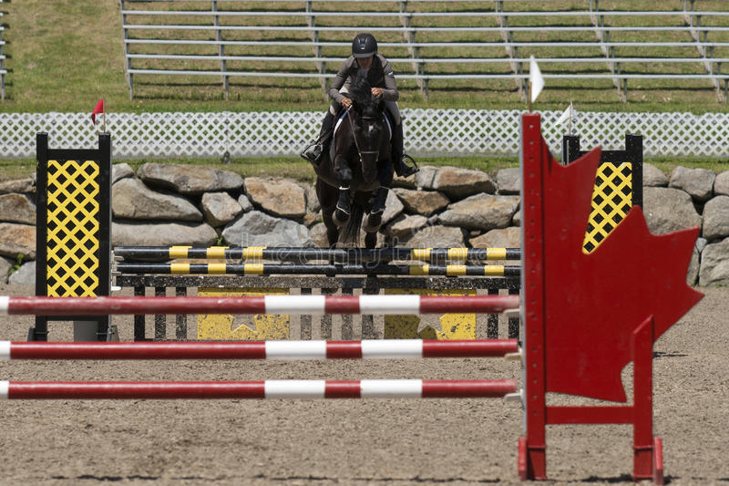 Young horsewoman on a black horse. Bromont june 14, 2015 front view of young woman with a black horse making a jump during competition stock photo