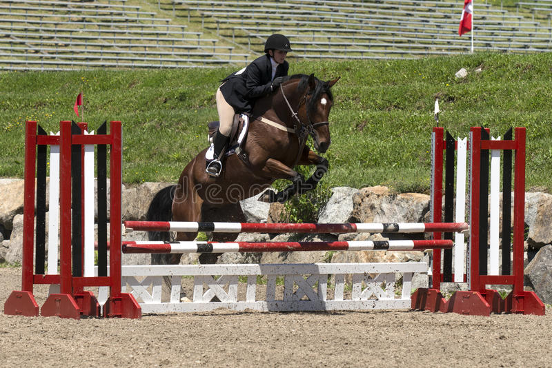 Young horsewoman on a brown horse. Bromont june 14, 2015 picture of girl with a brown horse making a jump during competition royalty free stock photo