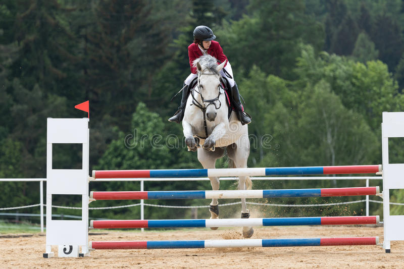 Young horsewoman in red jacket on a white horse stock image