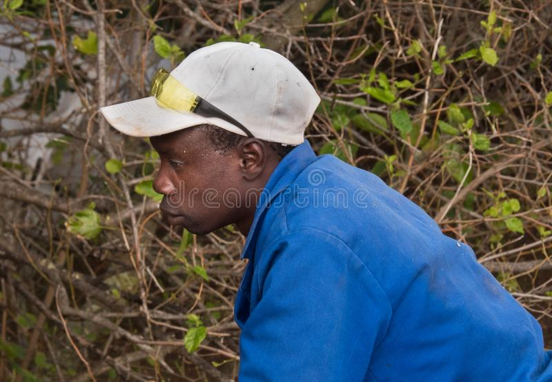 A young immigrant from Zimbabwe at work in South Africa royalty free stock image