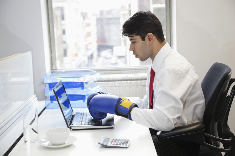 Young Indian businessman wearing boxing gloves while using laptop at office desk royalty free stock images