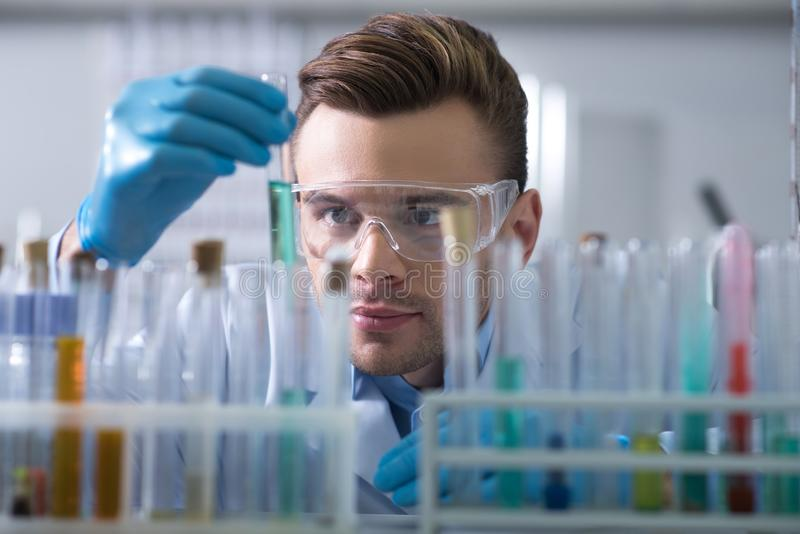 Young interested scientist keeping and overlooking test tube. royalty free stock photo