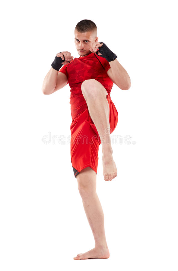 Young kickbox fighter on white royalty free stock images