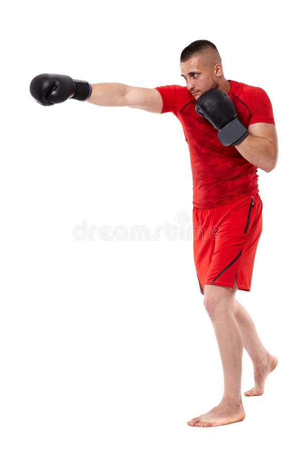 Young kickbox fighter on white royalty free stock image