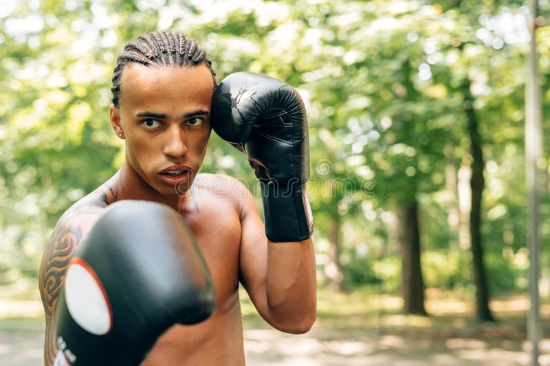 Young kickboxer with guard mouth and gloves royalty free stock images