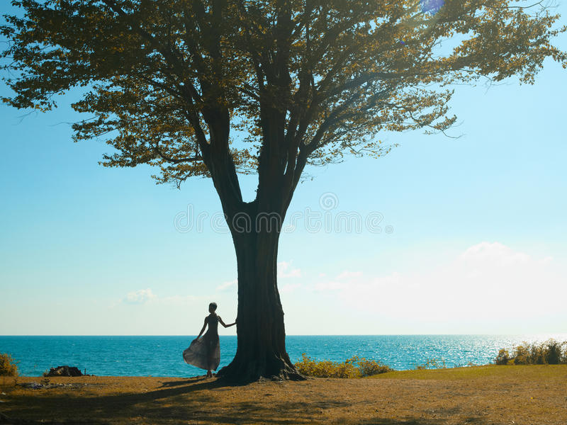 Download Young Lady With A Beautiful Tree Stock Image - Image: 21640553