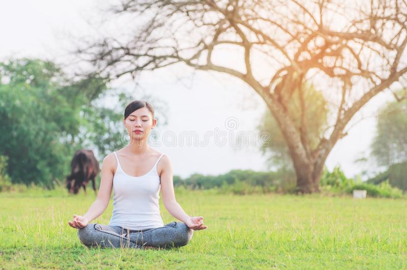 Young lady doing yoga exercise in green field outdoor area showing calm peaceful in meditation mind. People practise yoga for meditation and exercise concept royalty free stock photography