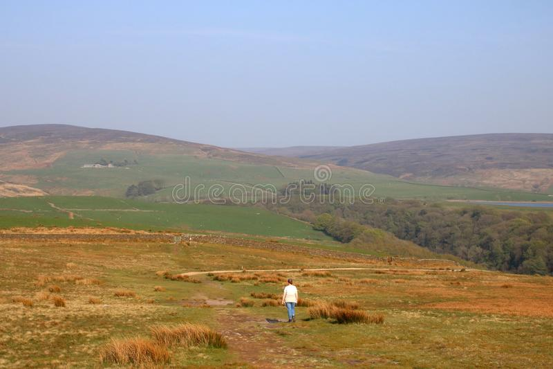 Young lady on footpath, moorland, Nicky Nook Fell. Young lady walking on moorland footpath on the top of Nicky Nook Fell, Scorton, Lancashire, England on a sunny royalty free stock image