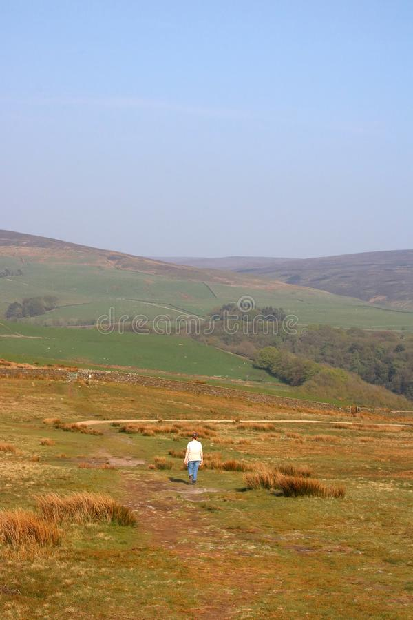 Young lady on footpath, moorland, Nicky Nook Fell. Young lady walking on moorland footpath on the top of Nicky Nook Fell, Scorton, Lancashire, England on a sunny stock image