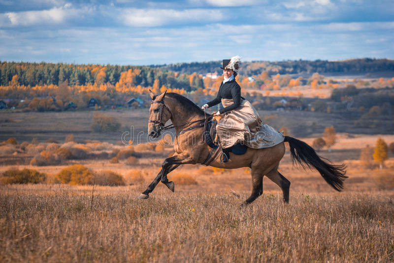 Young lady in 19th century dress riding a akhal teke horse. Young pretty lady galopping on a akhal teke horse. Nineteenth century dress. Autumn hunting with stock photos