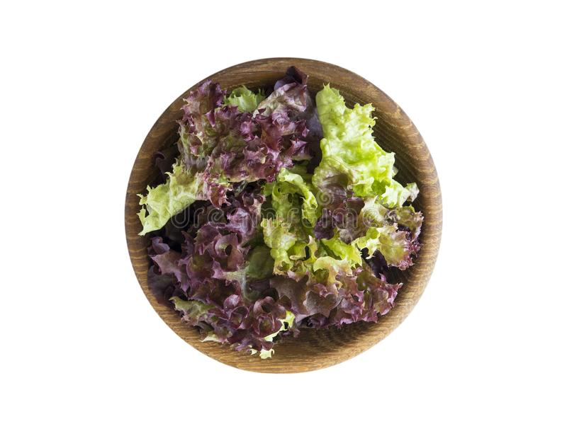 Young lettuce leaves in wooden bowl. Top view. Lettuce isolated on a white background. Purple lettuce with copy space stock photography