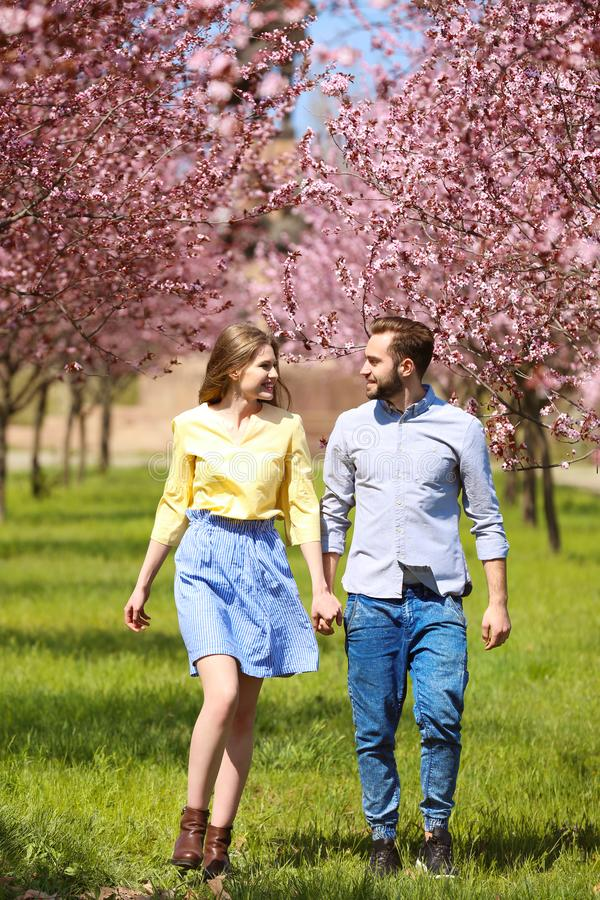 Young lovely couple walking. In spring park stock image