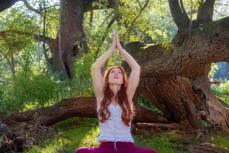 Young lovely red-haired woman ginger doing yoga exercises with hands and face up in nature in the forest in sportswear. In the sun royalty free stock photography