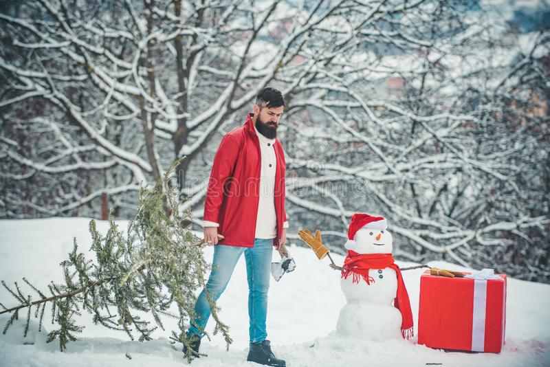 Young lumberjack bears fir tree in the white snow background. Winter portrait of lumber in snow Garden cutting Christmas stock photography