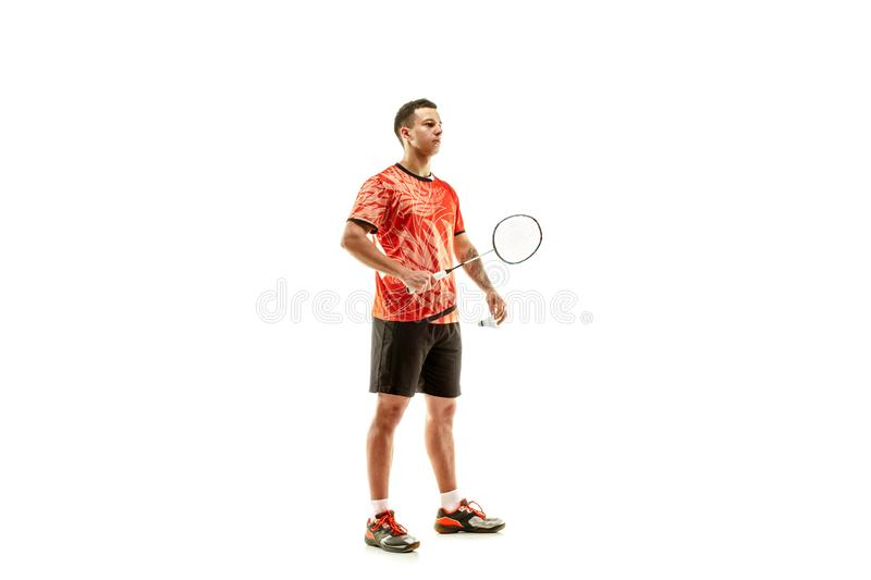 Young male badminton player over white background. Young man badminton player standing over white studio background. Fit male athlete royalty free stock images