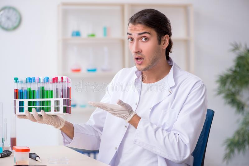 Young male chemist working in the lab. The young male chemist working in the lab royalty free stock photos