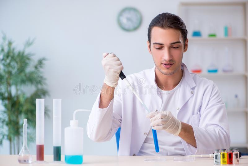 Young male chemist working in the lab stock image