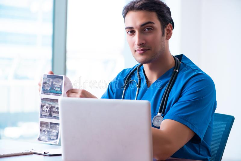 Young male doctor looking at doppler images. The young male doctor looking at doppler images royalty free stock image