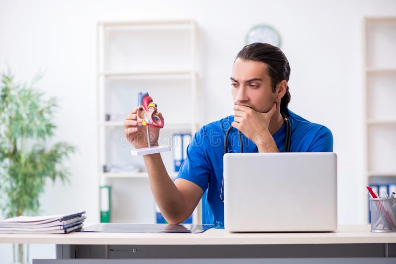 Young male doctor working in the clinic. The young male doctor working in the clinic stock image