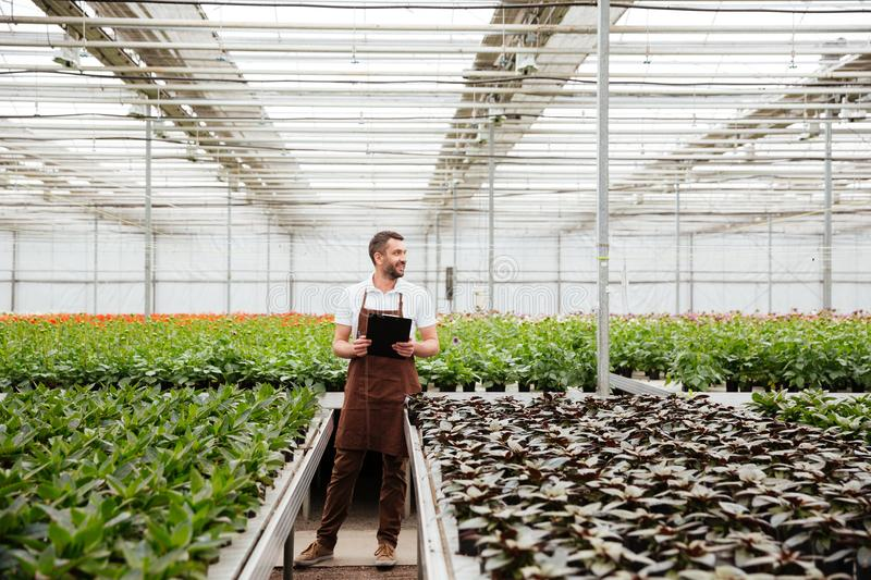 Young gardener working with plants in greenhouse royalty free stock images