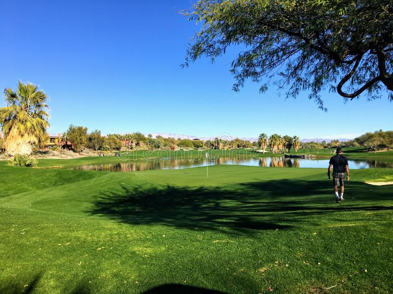 A young male golfer walking towards the green on a par 4 surrounded by water on a golf course in the desert oasis of Palm Springs stock image