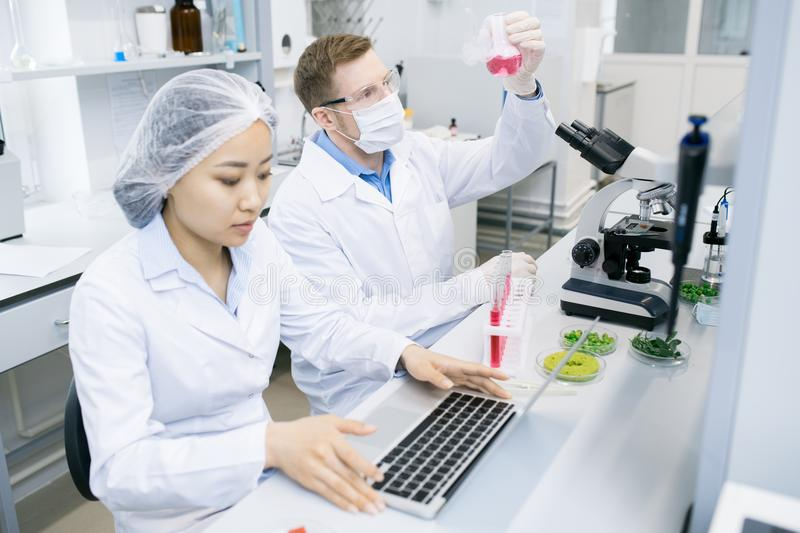 Scientists testing meat nutrition in laboratory royalty free stock photography