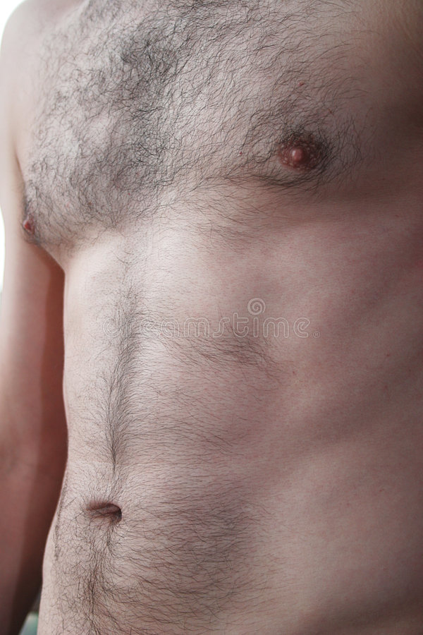 Download Young Males torso stock photo. Image of flesh, male, nipple - 153472