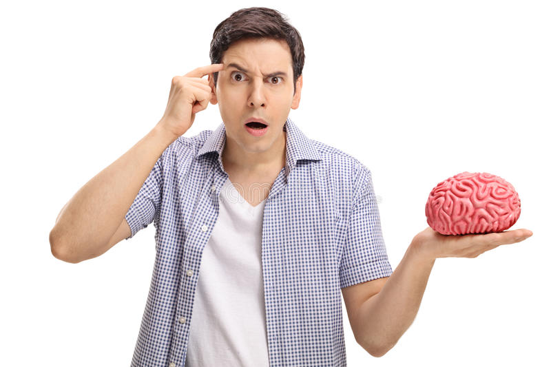 Young man asking do you have a brain. Young man with a brain model holding a finger on his temple asking do you have a brain isolated on white background royalty free stock images