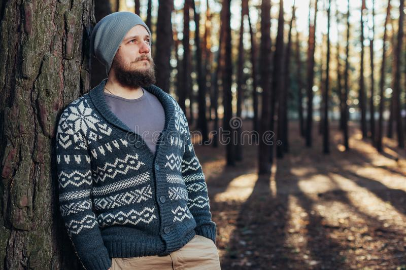 A young man with a beard walks in a pine forest. Portrait of a brutal bearded man Autumn forest stock photos