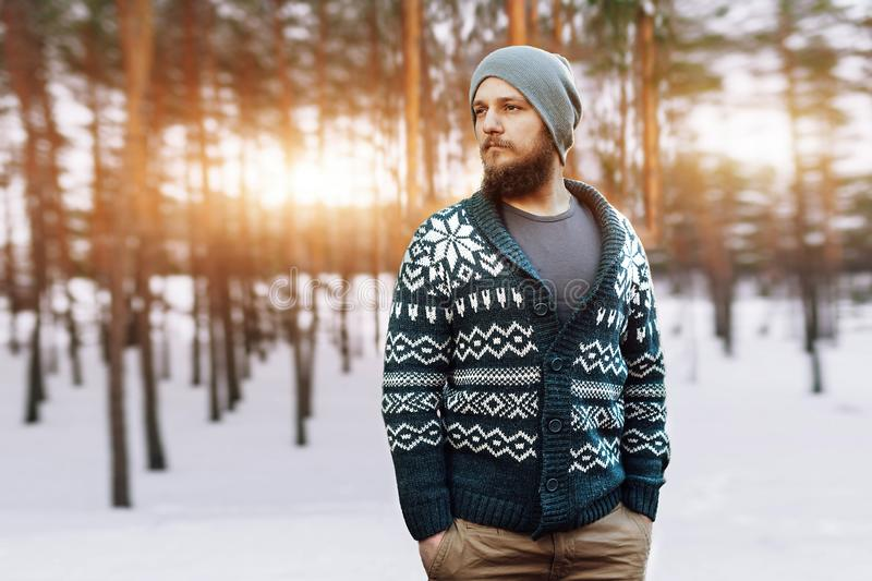 Young man with a beard walks in a pine forest. Portrait of a brutal bearded man. Autumn forest stock image
