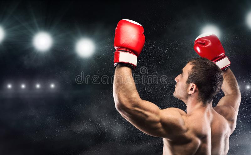 Young man boxer enjoying his win with hands up. World champion! Young man boxer enjoying his win with hands up in gloves, standing on stadium, copy space royalty free stock photography
