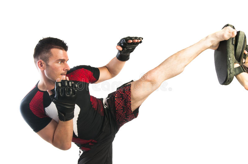 Young man boxing in MMA gloves stock images