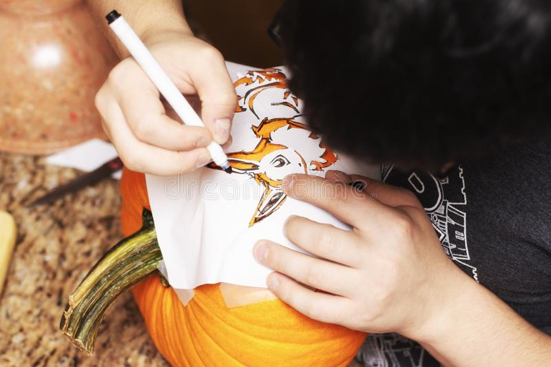 A young man carving a jack-o-lantern drawing on the design royalty free stock image