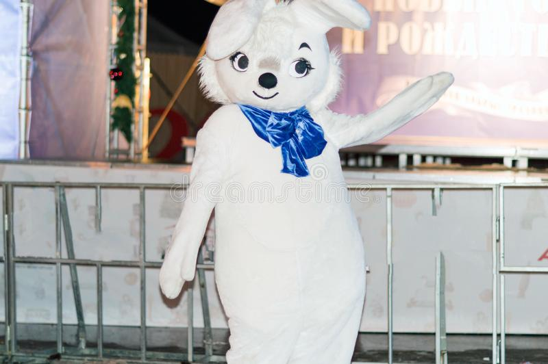 A young man in the costume of a white, fluffy hare stands near the New Year tree and entertains and photographs with visitors on t. He street. Russia stock illustration