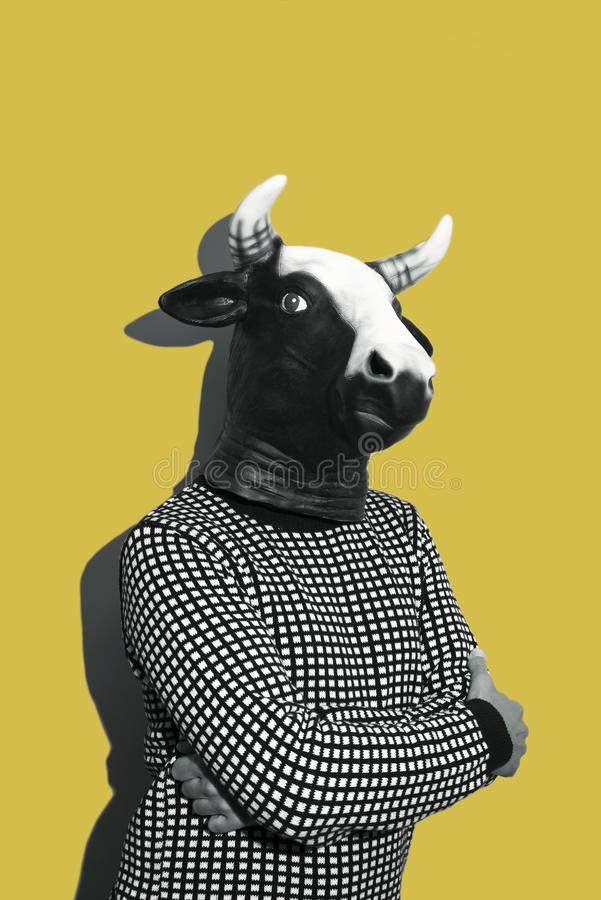 Young man with a cow mask. Young caucasian man with a cow mask, in black and white, on a yellow background with some blank space on top stock image