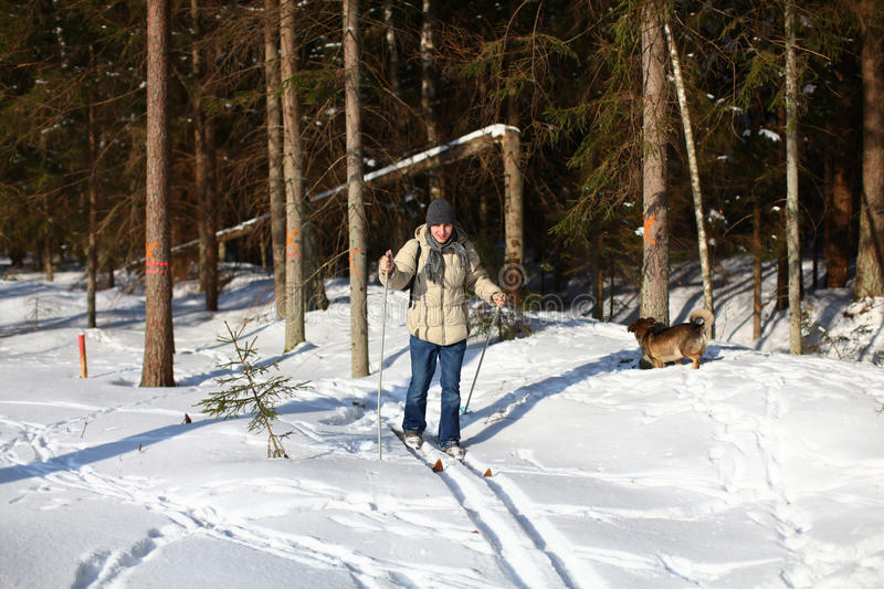 Download Young Man Cross-country Skiing Through The Forest Stock Photo - Image: 22538376