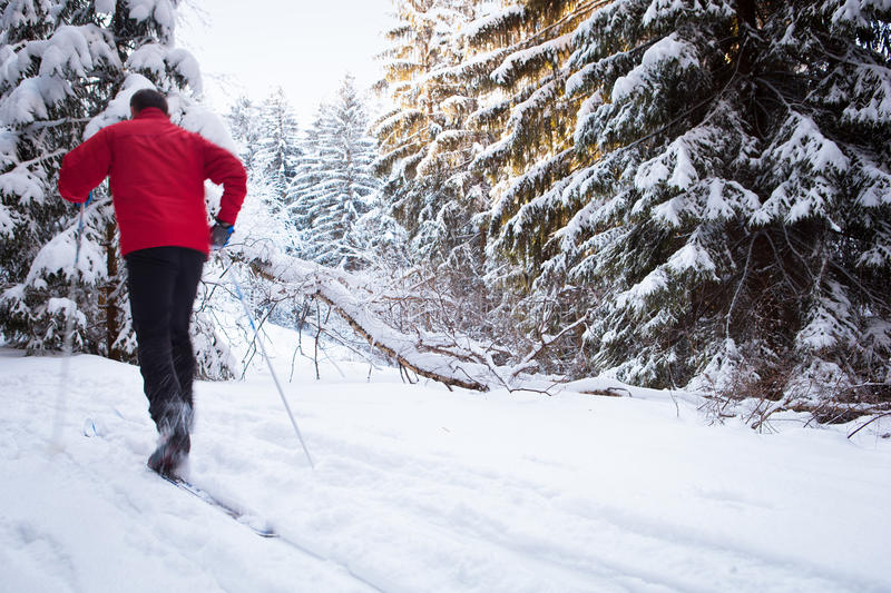 Download Young Man Cross-country Skiing On A Lovely Winter Day Stock Photo - Image of outdoors, healthy: 54542266