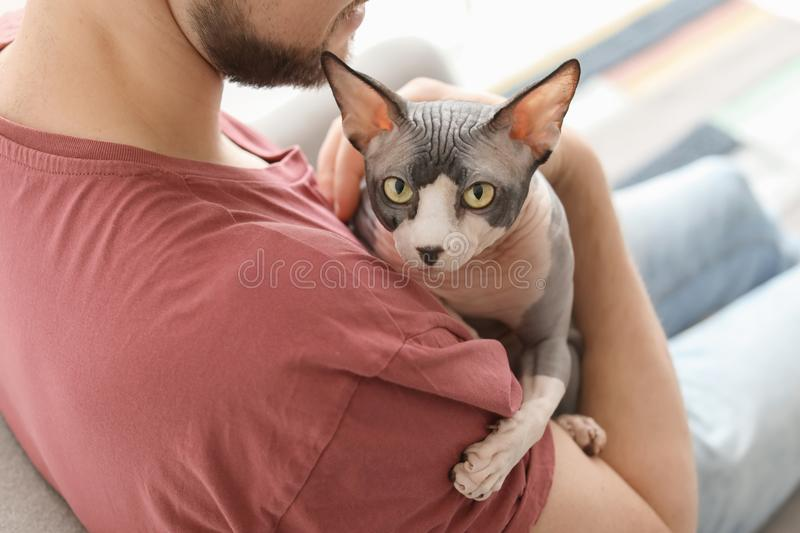 Young man with cute cat stock image
