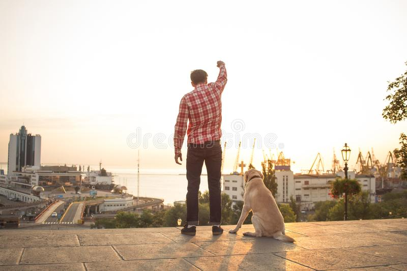Morning walk of young male and gold labrador dog. Young man with dog walk alone in morning streets stock images