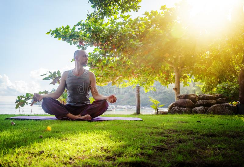 A young man doing yoga in nature. Healthy lifestyle, meditation, lifestyle concept royalty free stock images
