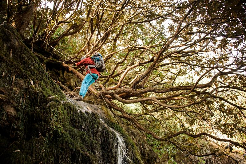 Young man dulfers down the mountains with waterfall in Adjara. Young man in a red jacket with backpack dulfers down the mountains with trees and small beautiful stock images