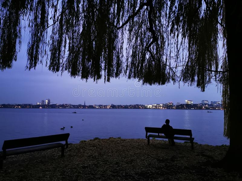 Young man enjoys the silence with a view of the city lights and their reflection in the water under an old weeping willow tree. Young man enjoys the silence in stock photos
