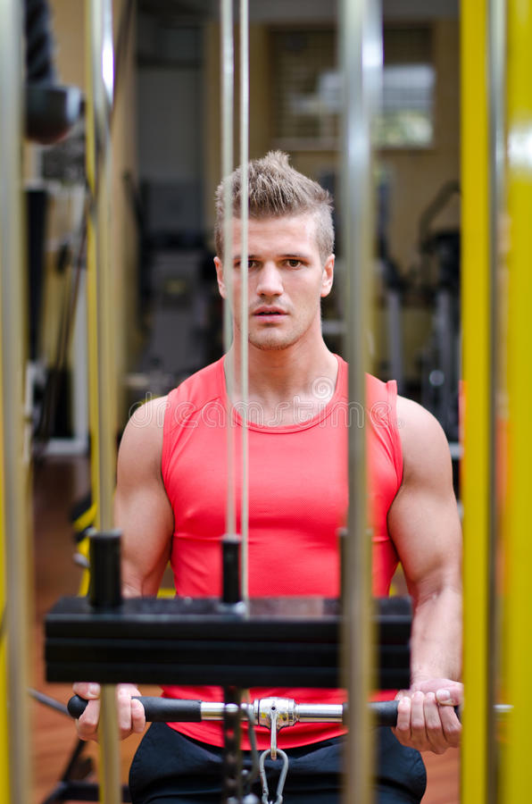 Download Young Man Exercising Biceps On Gym Machine Royalty Free Stock Images - Image: 35805239