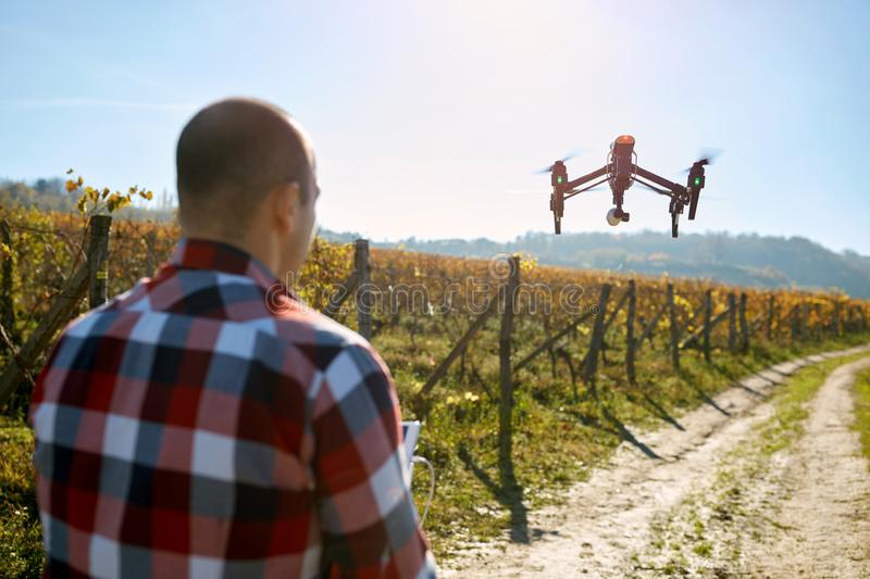 Man filming vineyard with drone royalty free stock photos