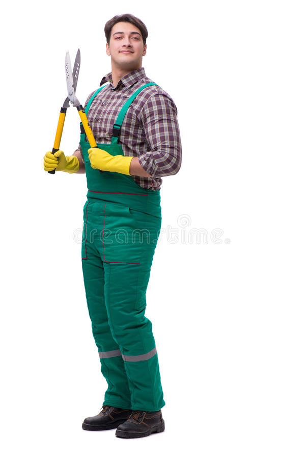 The young man gardener isolated on white royalty free stock photography