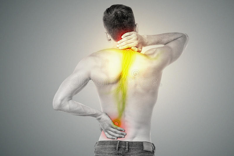 Download Young Man Has Pain In His Back Stock Illustration - Image: 45586966