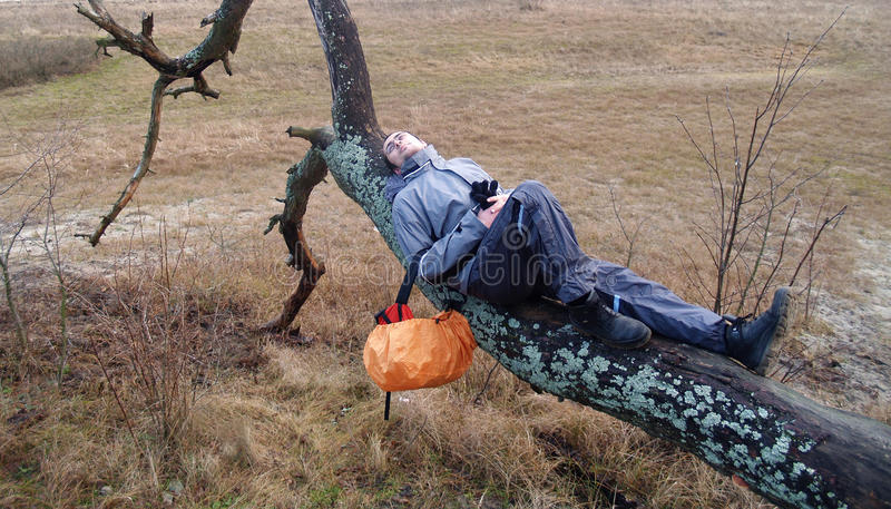 The young man has a rest, lying on a tree stock image
