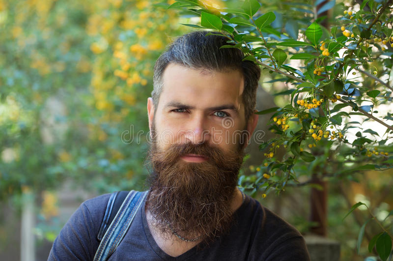 Young man hipster with beard royalty free stock photography