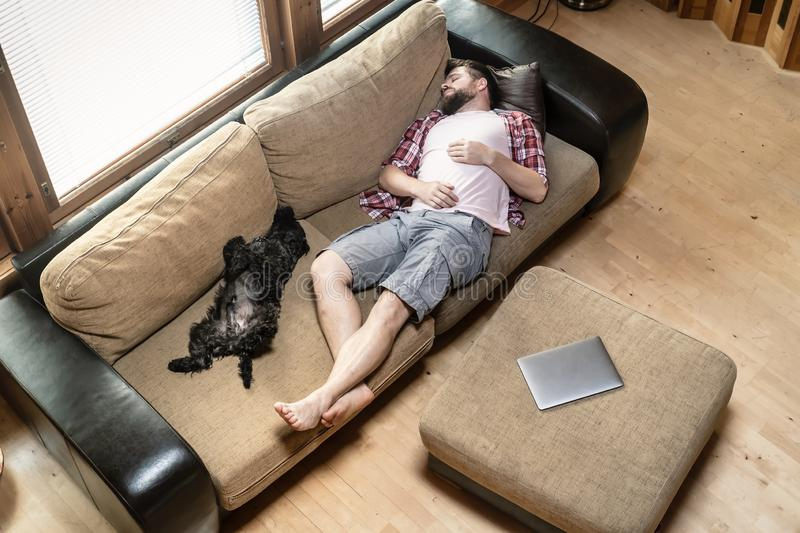 Young man with his dog Schnauzer amusingly fell asleep on a soft sofa, next to a laptop royalty free stock images